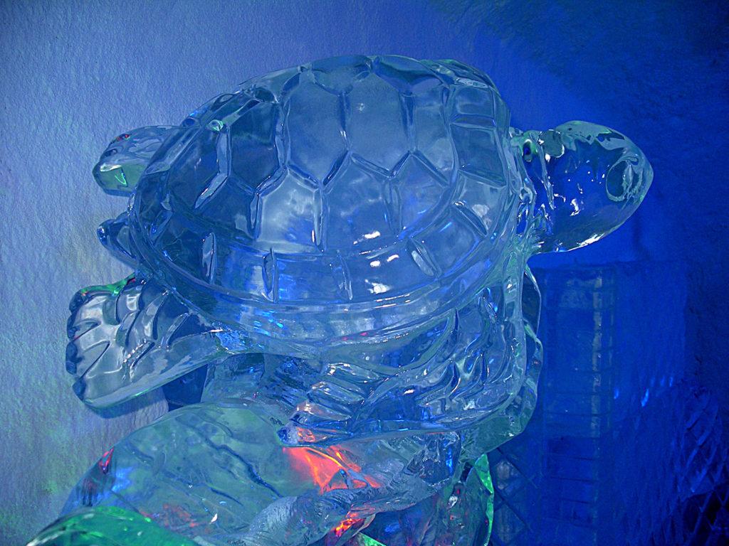 museo del ghiaccio - Ghiaccio d'Arte